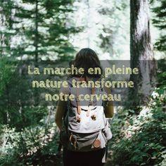 Le contact avec un environnement naturel est bénéfique à notre santé mentale et physique. Les bienfaits sont d'ailleurs visibles au niveau de notre cerveau. C'est ce que révèle une récente étude.