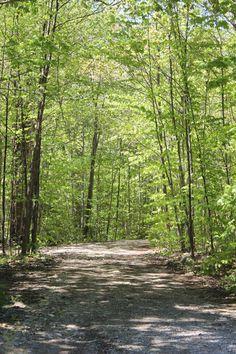 nature trail- gordonspark.com Gordon Parks, Event Calendar, Hiking Trails, Country Roads, Activities, Nature, Summer, Naturaleza, Summer Time