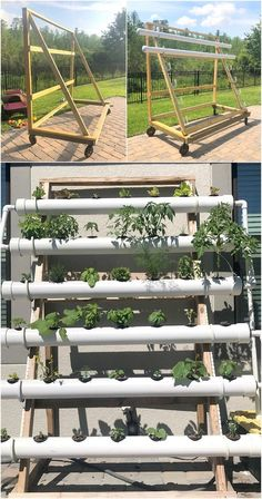 Here you time taken smart and great idea with it's movable property. Have a look on the pipe stand and plant setting in it that are really adoptable. Hydroponic make you able to grow your plants more fast. This idea is also related with hydroponic technique and you can represent this idea anywhere.