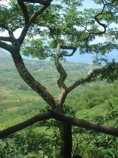 Malawi. BelAfrique your personal travel planner - www.BelAfrique.com