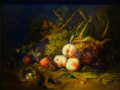Rachel Ruysch, Fruit and Insects, 1711  Rachel Ruysch, Fruit and Insects, 1711, oil on wood, 44 x 60 cm (Galleria degli Uffizi, Florence).