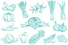 25 Outline hand drawn vegetable set ~ Illustrations on Creative Market