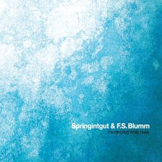 Springintgut & F.S. Blumm / the bird and white noise