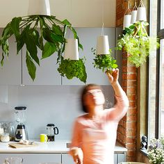 Lovely Cocoon: A Fruit Basket And Herb Planter In One! | Herbs And Herb Planters Amazing Ideas