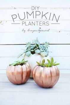 DIY Pumpkin Planters - brepurposed
