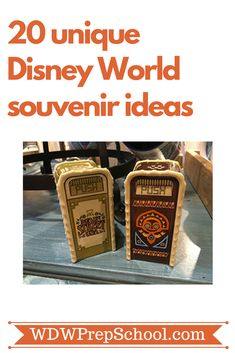 20 unique Disney World souvenirs + some general advice on souvenir shopping | #disneyworld #disneyshopping #disneytips