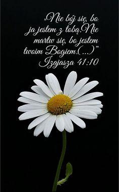 Jehovah's Witnesses, Torah, Motto, Worship, Prayers, Faith, Teaching, God, Motivation