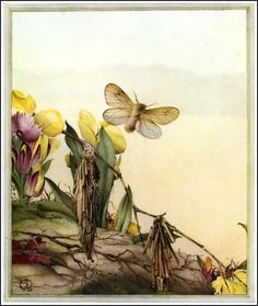 The Psyches - Fabre's Book of Insects, 1921