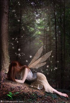 ✯ The Faerie who was Kissed .. By `Princess-of-Shadows✯