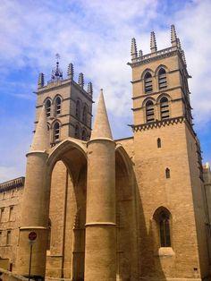Superbe Cathédrale Saint-Pierre à Montpellier