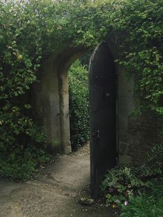 Oh, yes, this looks like a garden is hiding a secret beyond this door... How I would love to peek around it!