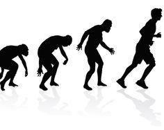 Wie konnte es denn sein, dass sich unsere direkten Vorfahren, der Homo erectus und dann der Homo sapiens gegen alle anderen Lebewesen durchsetzten? Sie waren körperlich deutlich schwächer als die meisten der anderen Säugetiere. http://www.functional-training-magazin.de/lange-laufen-war-der-entscheidende-vorteil/