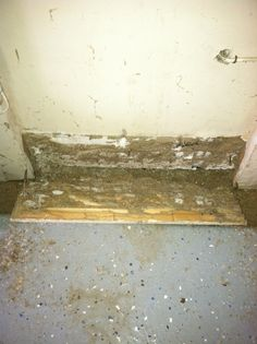 Look at the termite damage!