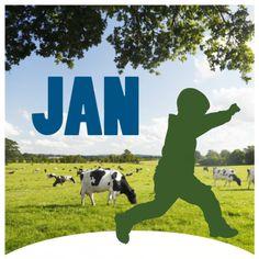 Hollands geboortekaartje zomer met jongen, koeien, weiland en blauw
