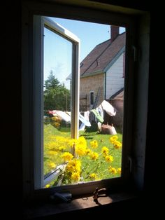 Through the window!