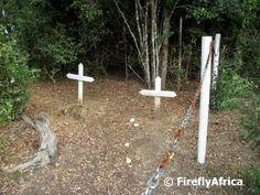 The Firefly Photo Files: Knysna forest graves Knysna, South Africa, History, Random, Beautiful, Historia, Casual