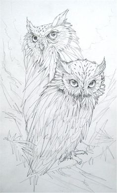 Owls by Jody Bergsma by kathrine (wood burning this would look fabulous!Jody Bergsma Coloring Pages. This is more proof adults should color too.Owls ~ save for pyrography patterndraw an owlto draw asap Bird Drawings, Animal Drawings, Drawing Sketches, Drawing Ideas, Drawing Owls, Pencil Drawings, Sketching, Colouring Pages, Adult Coloring Pages