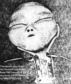 Ascension Earth : Is this a photograph of one of the roswell crash aliens?