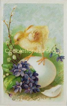 Easter Digital Download Chick Violets Pussy Willow Antique Image Illustration Victorian Joyous Easter Vintage Postcard Instant Download