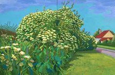 Image detail for -David Hockney: The East Yorkshire Landscape, paintings, Elderflower ...