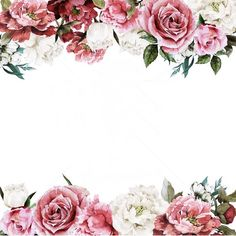 Whites to pinks to 🌹 Flower Backgrounds, Flower Wallpaper, Wallpaper Backgrounds, Iphone Wallpaper, Wedding Cards, Wedding Invitations, Borders And Frames, Paper Frames, Floral Border