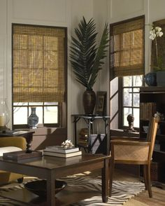 Discount blinds and shades. Great selection of faux wood blinds, bamboo shades, cellular shades and more. Window coverings at outlet prices. Woven Wood Shades, Bamboo Shades, Bamboo Blinds, Wood Blinds, Window Blinds, House Blinds, Roman Blinds, Bay Window, Interior Paint Colors
