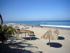 Máncora is a town and beach resort in the Piura Region, in northwestern Peru. It is located in the Talara Province and is capital of the Máncora District. The town has 8,852 inhabitants (1999).