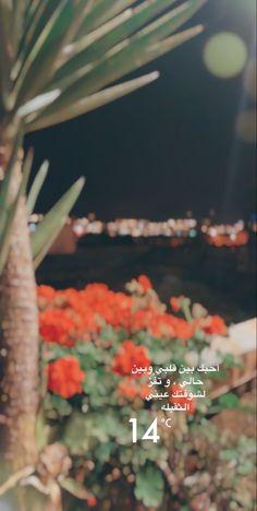 حب احبك ابها سياحة سناب سنابات تصويري سناب تصويري ليل قمر سهرة تصميم Album Design Design Arabic Words