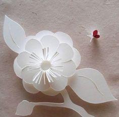 Flower & Bee Pattern