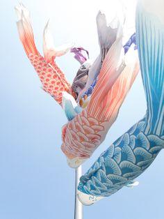 Celebrate the Children's Day make a carp streamer /Koinobori こいのぼり