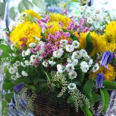 大髙令子さんの投稿|花時間 Yellow, Flowers, Plants, Plant, Royal Icing Flowers, Flower, Florals, Floral, Planets