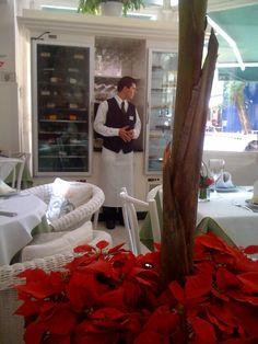 tatou restaurante [sao paulo]