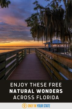 Discover the best outdoor destinations and natural wonders in Florida, for free! You'll find state parks, islands, wetlands, and more on this list. Small Water Features, Hidden Beach, Beaches In The World, Most Beautiful Beaches, Florida Travel, Lake View, Natural Wonders, Vacation Ideas, Road Trips