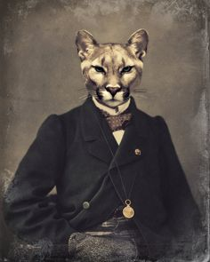 "Animal Art Print, Cougar Mountain Lion, Altered Vintage Photograph, Mixed Media Collage, Anthropomorphic, ""Chadwick"" on Etsy, $22.00"