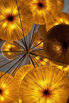 Pretty paper lanterns, in a golden yellow hue. Shades Of Gold, Shades Of Yellow, Golden Yellow, Yellow And Brown, Golden Color, Dandelion Color, Aesthetic Colors, Aesthetic Yellow, Mellow Yellow