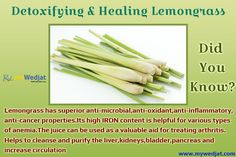 Did you know the facts about Lemongrass? #WedjatHealthFacts #Lemongrass #StayHealthy