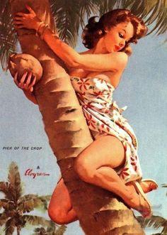 tropical pinup - Elvgren