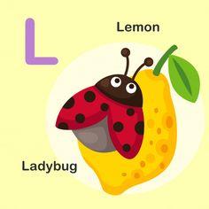 Illustration Isolated Animal Alphabet Letter L-lemon,ladybug Letter K Kite, Letter A Words, Flashcards For Toddlers, Cupcake Vector, Letter Games, Learning The Alphabet, Preschool Alphabet, Kids English, Animal Alphabet