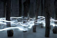 tree/light installation