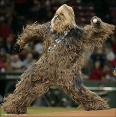 Chewbacha....this makes my two Geeks very happy!!