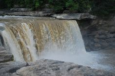 Its been my husband's dream for years to see a moonbow. Apparently, the only places you can see a moonbow (defined as a rainbow in the ligh. Corbin Kentucky, Cumberland Falls, Animal Rescue, Places Ive Been, Adventure, Animal Welfare, Adventure Movies, Adventure Books
