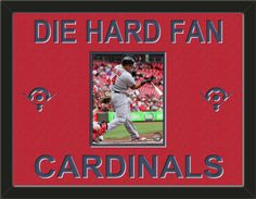 One framed 8 x 10 inch St. Louis Cardinals photo of Yadier Molina, double matted in team colors to 24 x 18 inches.  Includes one baseball diamond on each side and the words DIE HARD FAN* and CARDINALS**, which are cut into the top mat and show the bottom mat color.  $109.99 @ ArtandMore.com