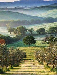 Les meilleures destinations ou partir au mois d'octobre - La Toscane, Italie                                                                                                                                                                                 Plus