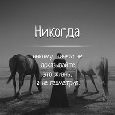 (7) Одноклассники Heartfelt Quotes, Quotes And Notes, Proverbs, Russian Quotes, Life Rules, Wise Quotes, Wisdom, I Love You, Psychology
