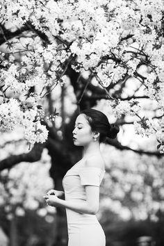 Miss Sakura: Spring Fashion photoshoot in Regent's park, London Spring Photography, Lifestyle Photography, Creative Photography, Photography Ideas, Cherry Blossom Pictures, Sakura Cherry Blossom, Regents Park London, Professional Portrait, Margarita