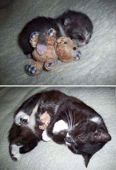 So cute.