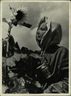 Vintage Lady Beekeepers