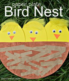 With so much new lifte, spring holds so many teachable moments. Kids learn by doing, making this paper plate bird nest craft great for learning about birds.