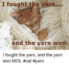 i-fought-the-yarn-and-the-yarn-won-i-fought-13292536.png (500×474)
