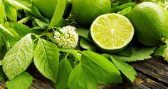 Kilka sposobów na wykorzystanie limonki